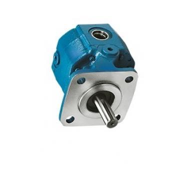 IHI 30Z Hydraulic Final Drive Motor